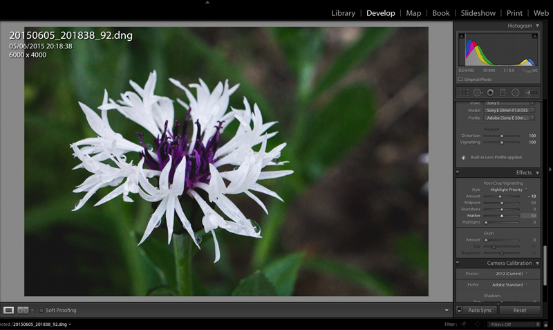 Adding Vignettes to Images