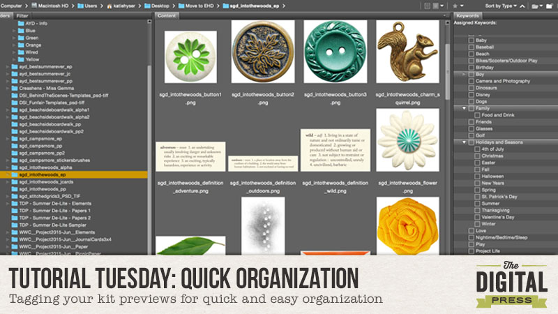 Tutorial Tuesday : Quick Organization