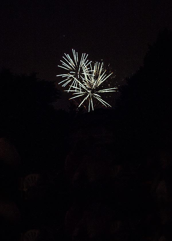 web fireworks
