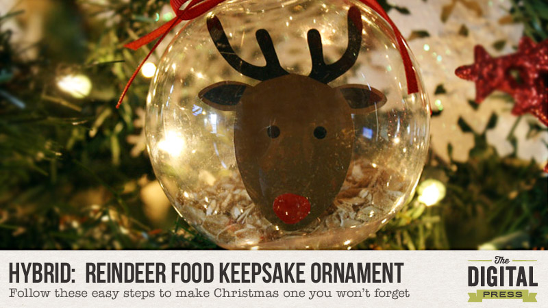 Reindeer Food Keepsake Ornament